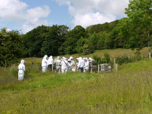 View of people crowded in the teaching apiary